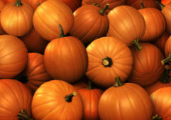 Pumpkins piled on each other.